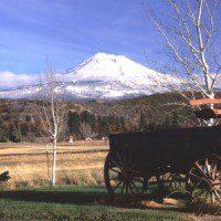 Old wagon at the ranch