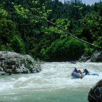Rafting on the Salmon River, California