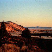 Gillems Bluff
