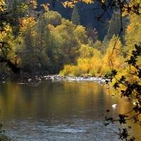Upper Sacramento River, photo by Kevin Lahey