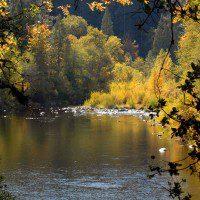 Upper Sacramento River, photo by Kevin Lahey
