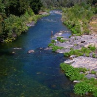 Upper Sacramento River at Lamoine, photo by Tom Chandler