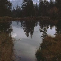 Dusk over the Pond