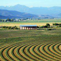 Farm Vista
